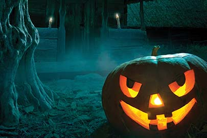 Haunted House Reviews