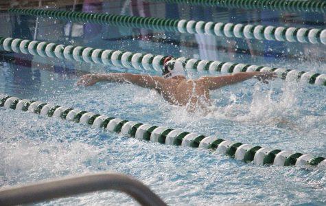 Gallery: Boys varsity swim and dive EKL Tournament