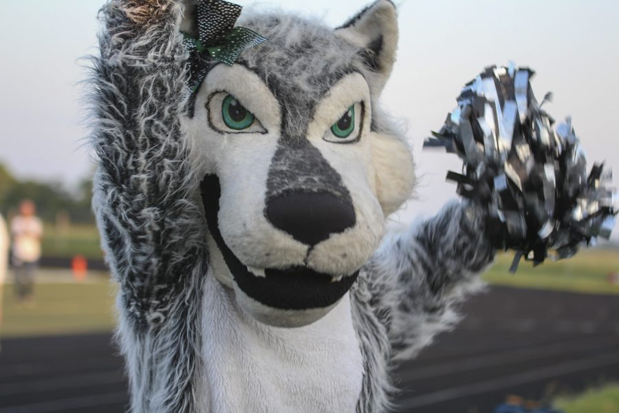 School+mascot+Tina+the+Timberwolf+cheers+for+her+fellow+timberwolves+at+the+green+and+white+scrimmage+on+Aug.+24.