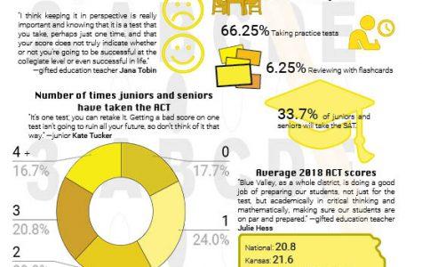 Standardized Stats: 96 students surveyed about testing.