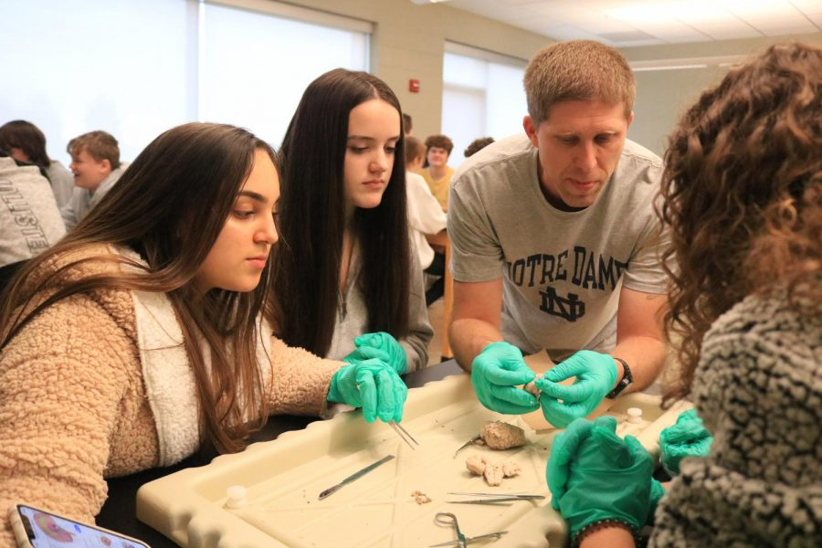 Anatomy and Physiology teacher Dr. Chris Jenson explains parts of the sheep brain to his students.